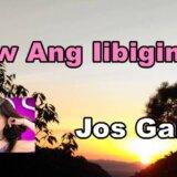 Ikaw Ang Iibigin Ko